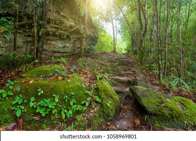 Beautiful landscape of walkway to hiking