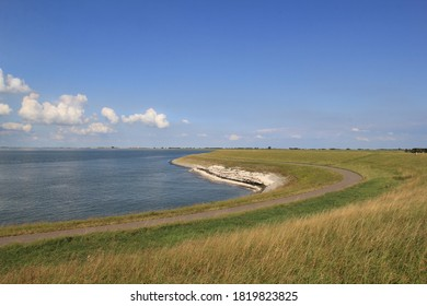 beautiful landscape with the westerschelde sea and a green sea wall with road in front in summer in zeeland, the netherlands