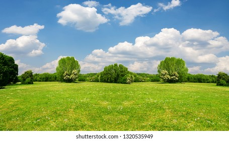 Beautiful landscape.Great as a background,web banner