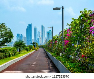 Beautiful landscaping in the city of Panama. background, ecology, Panama.