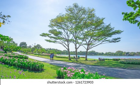 Beautiful landscaping and good maintenance in public park, group of trees on green grass lawn and garden of flowering plant, a couple walking on concrete walkway by blue lake under clear blue sky