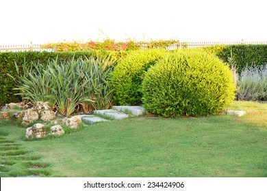 Beautiful landscaping in park