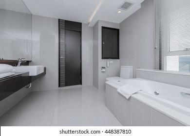 Beautiful Large Bathroom in Luxury Home
