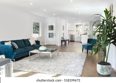 Beautiful large living room interior with hardwood floors, fluffy rug and designer furniture.