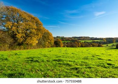 A beautiful late autumn November morning walk around Burwash East Sussex visiting Rudyard kiplings Batemans