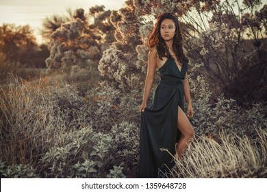 beautiful Latina model with long natural curly hair and tan skin posing while looking off to the side while wearing a long green dress in the middle of the desert with plants during the sunset