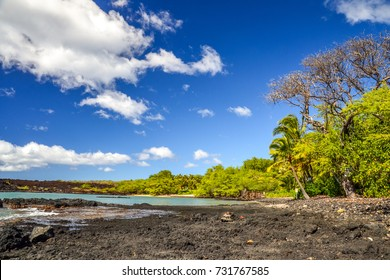 Beautiful lava beach at La Perouse Bay near Makena Beach on the island of Maui, Hawaii. Vast lava fields make La Perouse Bay a famous tourist attraction. Beautiful trees and palm trees on the beach.