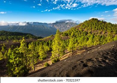 Beautiful lava landscape on the Cumbre Nueva in La Palma, Canary islands, Spain