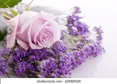 beautiful lavander and pink rose on bright background