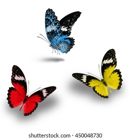 Beautiful Light Blue, Red and Yellow butterfly flying up