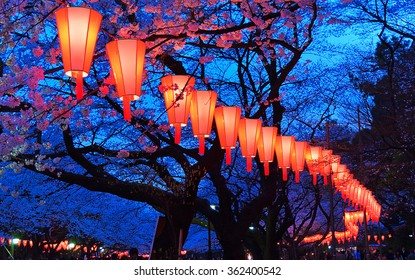 Beautiful light and colours of Japanese lanterns and cherry blossoms in Cherry-Blossom Viewing (O-Hanami) Festival at Ueno park, Tokyo, Japan.