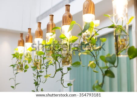beautiful lights with plants hanging in room