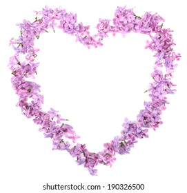 Beautiful lilac flowers in shape of heart isolated on white