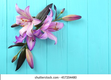 Beautiful lilies on blue wooden background