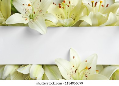Beautiful lily flowers and blank card, top view