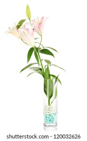 beautiful lily in glass vase isolated on white