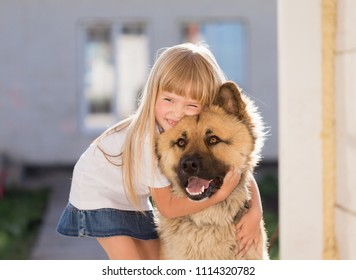 Beautiful little blonde hair girl, has fun smile face, embraces and plays with puppy dog, dressed in  white t-shirt. Child and animals portrait. Happy amazing couple. Kids family look. Close up.