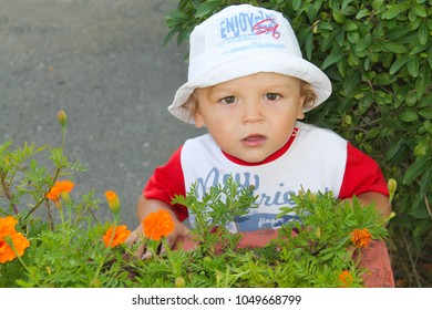 Beautiful little boy in a hat on a background of flowers. Orange flowers. Close-up portrait of a child