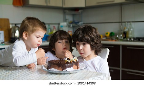 Beautiful little brunet and blond boys, has serious face, pretty eyes, long hair, eat cake in kitchen. Child portrait. Family kids concept. Blood brothers. Concept sweet food.