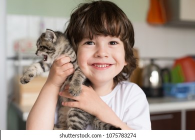 Beautiful little brunet hair boy, has fun smile face, happy eyes, dressed white t-shirt. Plays with kitten. Child and animals portrait. Family concept. Love and friendship.