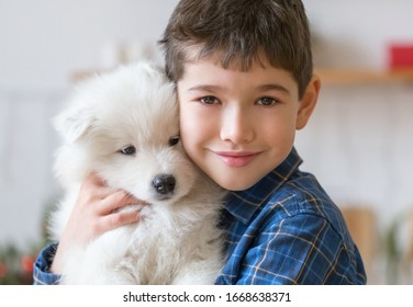 Beautiful little brunet hair boy, has fun smile face, brown eyes, dressed blue shirt. Plays with samoyed puppy dog. Child and animals portrait. Family concept. Love and friendship.