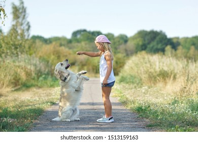 beautiful little girl with dog in the park