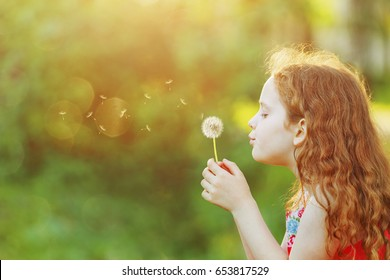 Beautiful little girl enjoying blowing dandelion dreaming  in spring park with copy space.