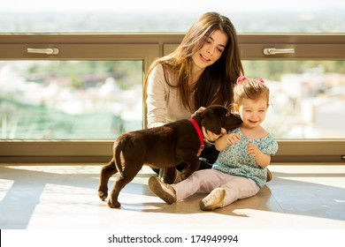 Beautiful little girl and her mom getting some puppy love and kisses from her new brown Labrador