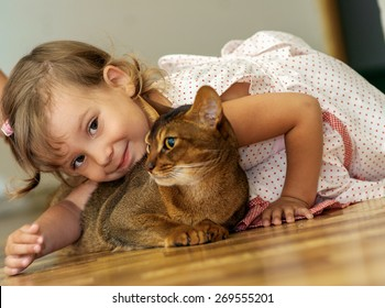 Beautiful little girl playing with a cat Abyssinian.