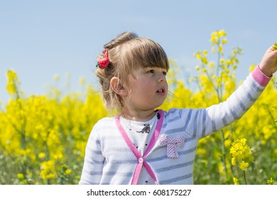 Beautiful little girl playing in nature. Around a lot of growing beautiful yellow flowers