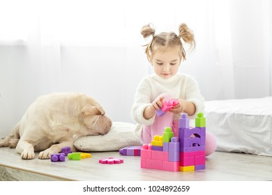Beautiful little girl playing with plastic toy blocks. The dog lies. The concept of lifestyle, childhood, upbringing, family.
