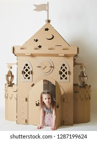 Beautiful little girl in princess dress playing with her toy castle.