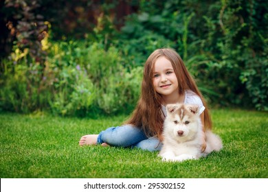 beautiful little girl with puppy husky in the meadow