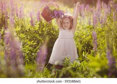 beautiful little girl wearing a dress with a basket in the hands of playing and smiling in a field of purple flowers