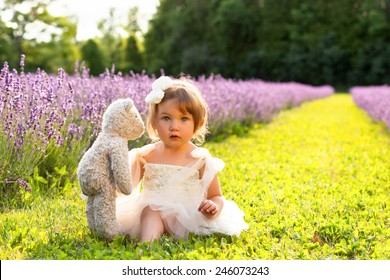 Beautiful little girl wearing white dress sitting in lavender field playing with teddy bear