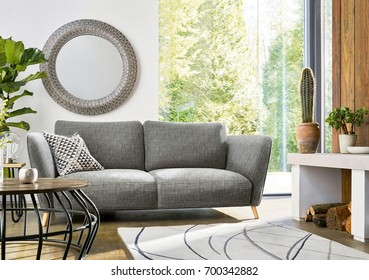 Beautiful living room with sofa