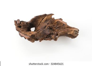 beautiful log on white background