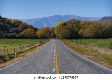 Beautiful longer road to the mountain at New Zealand.