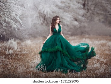 Beautiful long-haired girl in a magnificent emerald fairy dress walks in the winter forest. The wind develops hair and hem paying. Fairy tale fantasy winterstory. Art photo