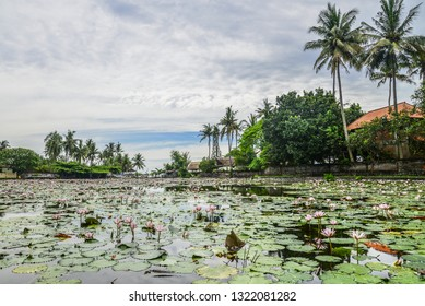 Beautiful Lotus Lagoon pond surrounded by tropical palm trees in Candidasa village, Bali, Indonesia.