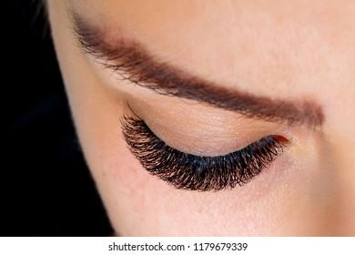 Beautiful macro shot of female eye with extreme long eyelashes and black liner makeup. Perfect shape make-up and long lashes. Closeup macro shot of fashion eyes visage