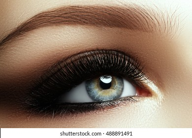 Beautiful macro shot of female eye with extreme long eyelashes and smoky makeup. Perfect eyebrows and long lashes. Cosmetics and make-up. Closeup macro shot of fashion eyes visage