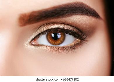 Beautiful macro shot of female eye with extreme long eyelashes and smoky makeup. Perfect eyebrows and long lashes. Cosmetics and make-up. Closeup macro shot of fashion eyes visage