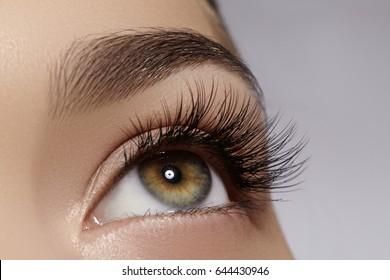 8fdfc2e2ecb Beautiful macro shot of female eye with extreme long eyelashes and black  liner makeup. Perfect