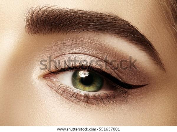 典型的なアイライナー化粧をした女性の目の美しいマクロショット。眉、茶色の目窓、長いまつげの完璧な形。化粧品とメイク。ファッションライナーの目のビジュアルの接写