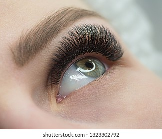 Beautiful macro shot of female open eye with eyelash extension. Natural look and bushy long lashes, close up, selective focus. Beauty industry and products, salon, fashion. false eyelashes, make up
