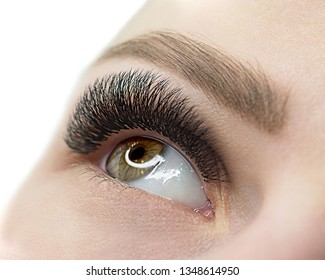 Beautiful macro shot of female open eye with eyelash extension. Close up, selective focus. Beauty service and products, fashion, make up, cosmetic, medicine, laser surgery, eyesight, vision correction