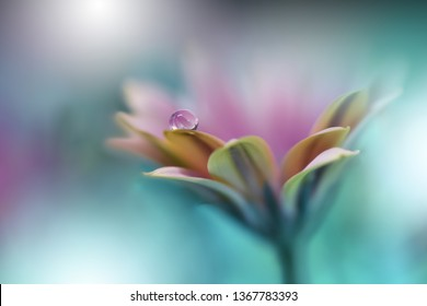 Beautiful Macro Shot of Magic Flowers. Border Art Design.Extreme close up Photography.Conceptual Abstract Image.Green Nature Background.Artistic Floral Art.Creative Wallpaper.Amazing Spring Flower.
