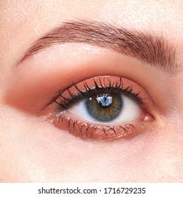 Beautiful make up closeup macro