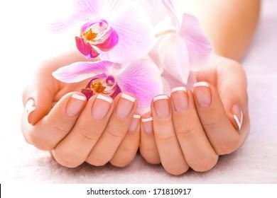 beautiful manicure on white
